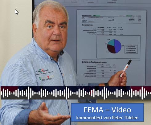 Video Software FEMA Fehlermanagement